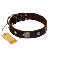 """Magic Stones"" FDT Artisan Brown Leather English Bulldog Collar with Chrome Plated Brooches and Studs"
