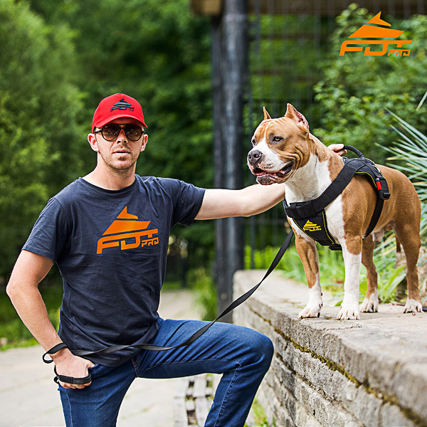 Men T-shirt of Best Quality Cotton with Professional Logo for Dog Trainers