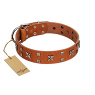 """Faraway Galaxy"" FDT Artisan Tan Leather English Bulldog Collar Adorned with Stars and Squares"