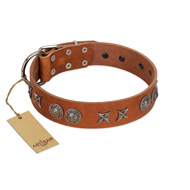 """Splendid Armor"" Premium Quality FDT Artisan Tan Designer English Bulldog Collar with Shields and Stars"