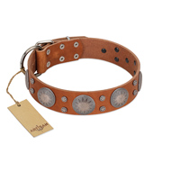 """Far Star"" FDT Artisan Tan Leather English Bulldog Collar with Engraved Studs"
