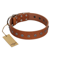 """Daintiness"" Designer Handmade FDT Artisan Tan Leather English Bulldog Collar with Silver-Like Adornment"