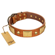 """Mutt The Daredevil"" FDT Artisan Tan Leather English Bulldog Collar with Old Bronze-like Skulls and Plates"