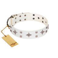 """The Milky Way"" FDT Artisan White Leather English Bulldog Collar Adorned with Stars and Tiny Squares"