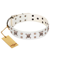 """Skull Island"" Premium Quality FDT Artisan White Designer English Bulldog Collar with Crossbones and Studs"