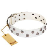 """Wild Flora"" FDT Artisan White Leather English Bulldog Collar with Silver-like Engraved Studs"