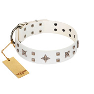 """Starry Heaven"" Designer Handcrafted FDT Artisan White Leather English Bulldog Collar with Stars and Studs"