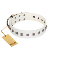 """True Grace"" Premium Quality FDT Artisan White Designer English Bulldog Collar"
