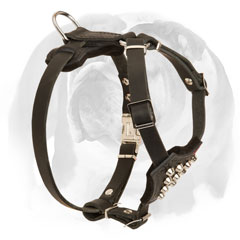 High-quality leather Bulldog harness for puppies