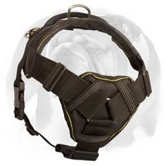 English Bulldog nylon dog harness