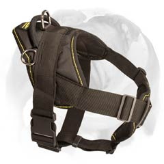 English Bulldog all weather harness