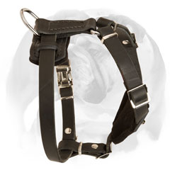 Decorated with cones leather dog harness for Bulldog puppies