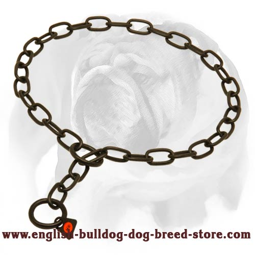 English Bulldog Amazing Black Stainless Steel Dog Chain Collar