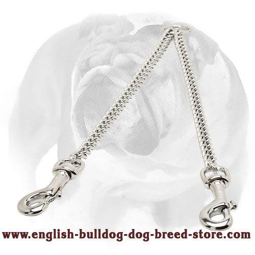 English Bulldog Chrome Plated Dog Coupler for Walking 2 Dogs