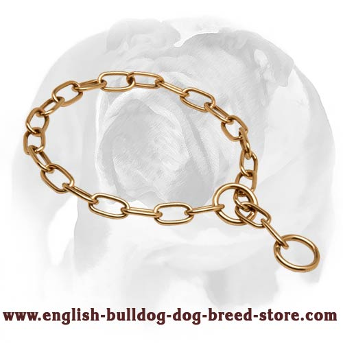 English Bulldog Choke Chain Dog Collar Perfect for Training and Walking
