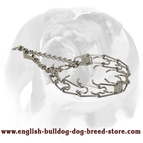English Bulldog Pinch Collar with Swivel and Small Quick Release Snap Hook