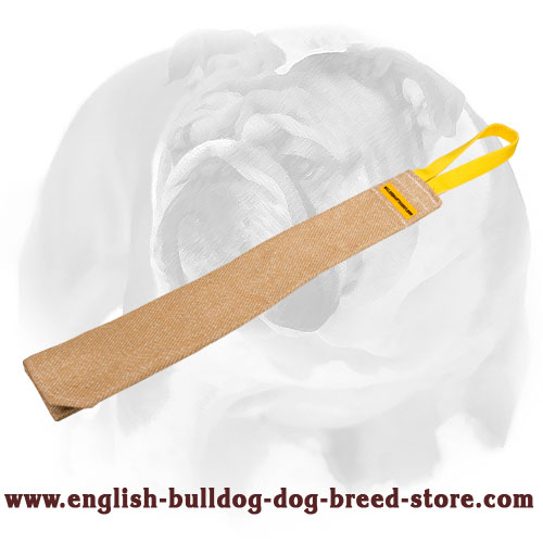 English Bulldog Jute Bite Rag for Prey Drive Training Puppies and Young Dogs