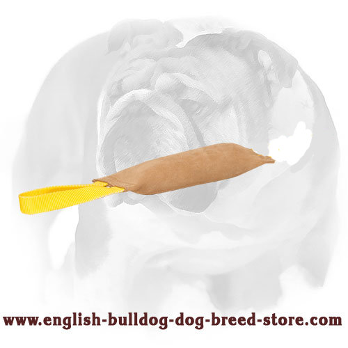 English Bulldog Leather Bite Tug with 1 Handle
