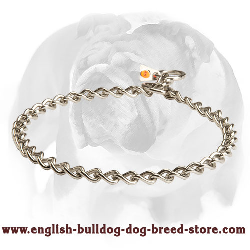 English Bulldog Herm Sprenger Dog Chain Collar Made Of Stainless Steel