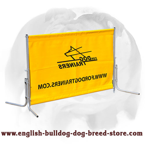 English Bulldog High Quality 2015 Schutzhund jump