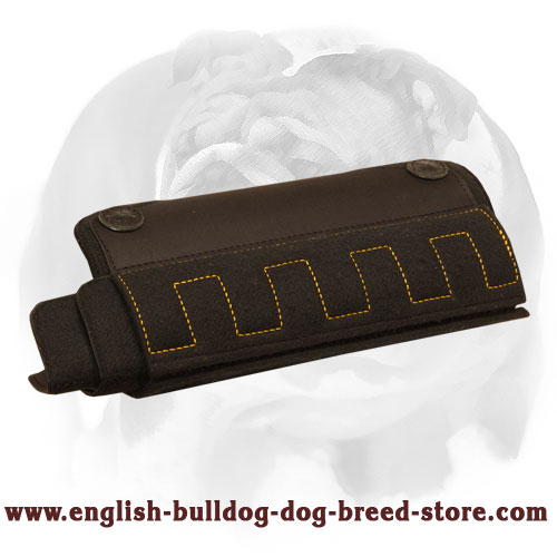 English Bulldog Durable Puppy and Young Dog Bite X-Developer