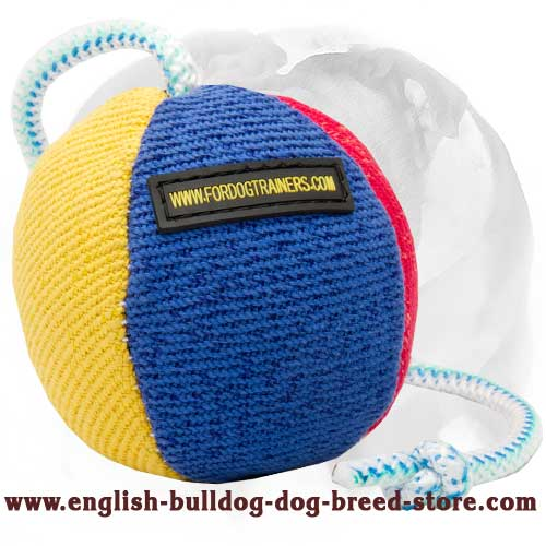 English Bulldog Bite Ball for Games and Other Activities