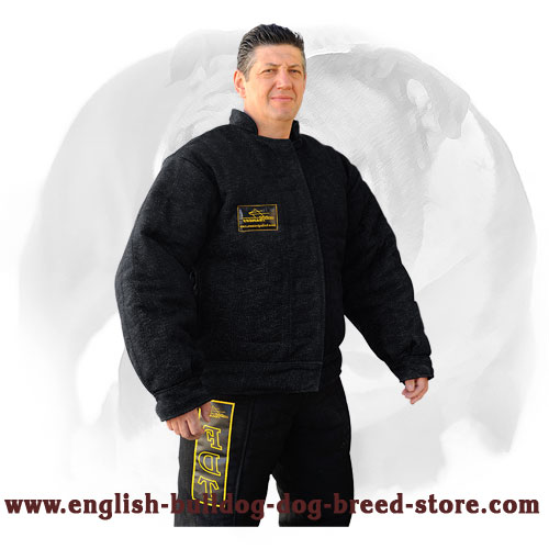 Dog Bite Protection Suit for English Bulldog Training and Competition