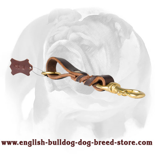 English Bulldog Trendy Short Leather Dog Pull Tab Leash