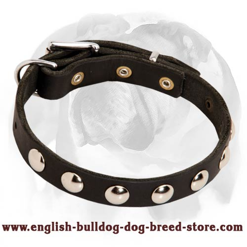 Puppy Collar Decorated With Half-Ball Studs for Gorgeous Look of your Doggie