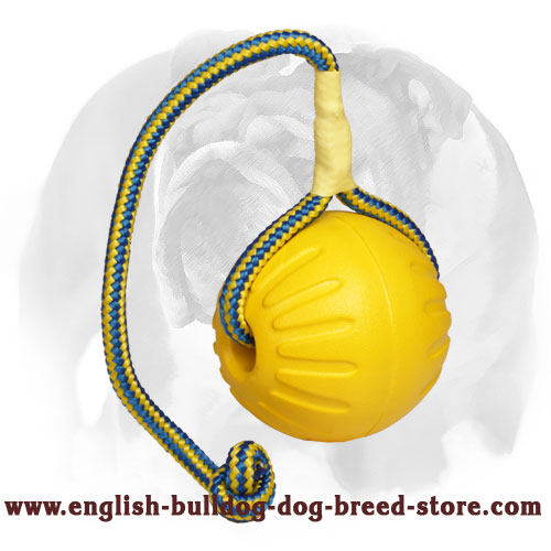 "English Bulldog ""High Fly"" Lightweight Ball for Training"