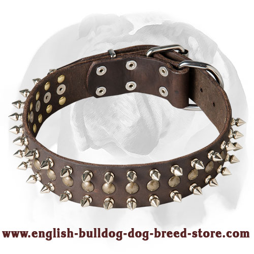 English Bulldog Leather Dog Collar With Spikes and Studs