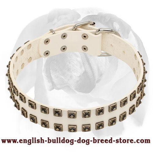 English Bulldog White Pure Leather Dog Collar with Studs - Click Image to Close