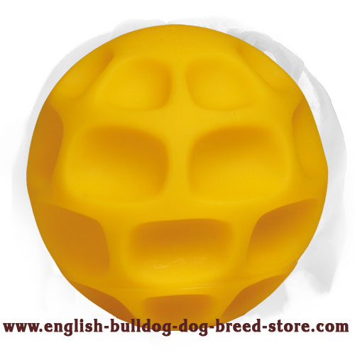 English Bulldog Large Honeycomb Treat Dispenser Toy