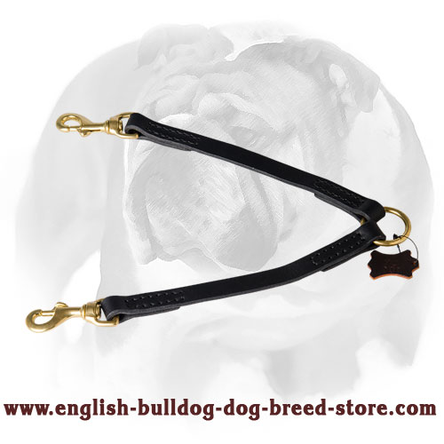 English Bulldog Leather Coupler for 2 Dogs Leash