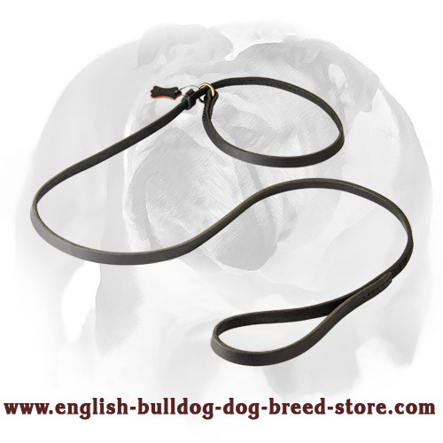 English Bulldog Leather Dog Leash and Choke Collar 2-in-1