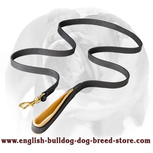 English Bulldog Leather Dog Leash with Support Material on the Handle
