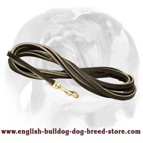 English Bulldog Leather Leash for Training and Tracking