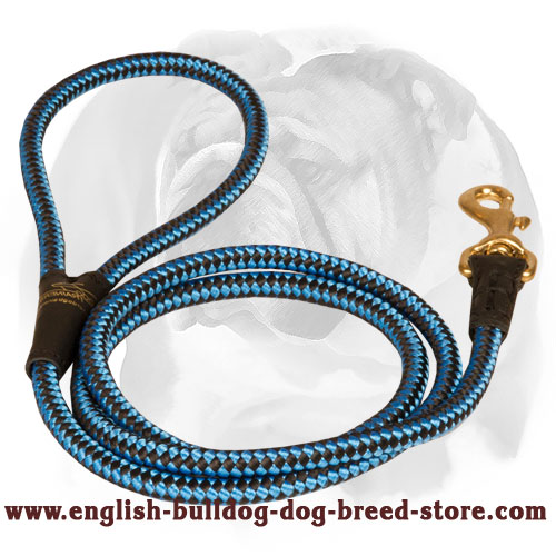 English Bulldog Nylon Cord Dog Leash for Walking