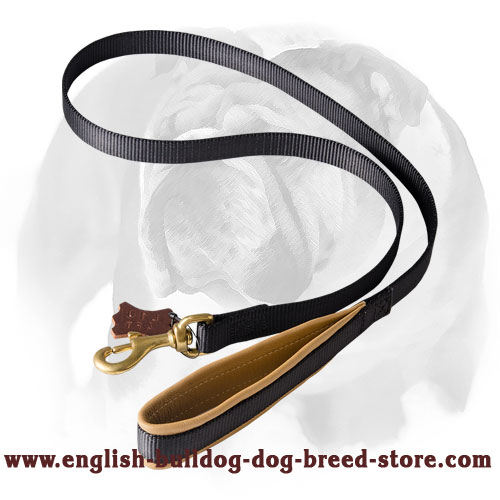 English Bulldog Comfortable Walking Dog Leash with Soft Padding
