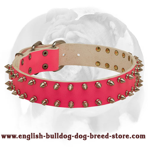 English Bulldog 2 Rows of Spikes Pink Leather Dog Collar