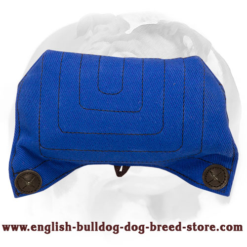 English Bulldog French Linen Puppy Bite Builder for Training