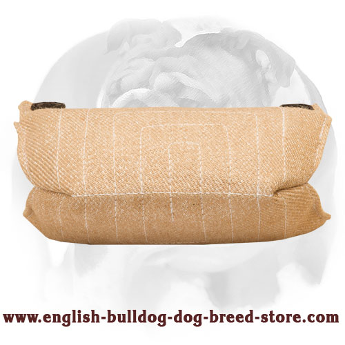 English Bulldog Jute Puppy Bite Builder for Basic Training