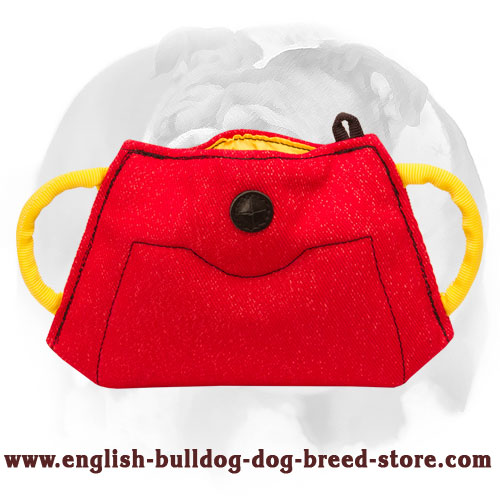 English Bulldog New Solid Puppy Bite Builder for Training