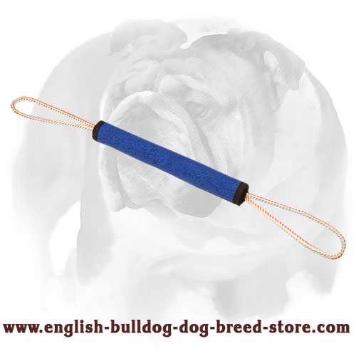 English Bulldog Bite Roll with 2 Handles for Training and Playing - Click Image to Close