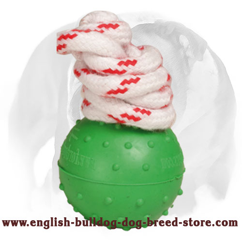 Dotted Rubber Ball for English Bulldog Training and Playing