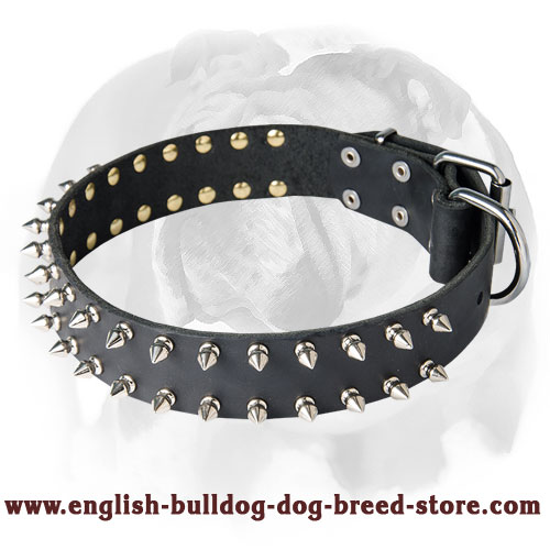English Bulldog Leather Dog Collar with 2 Rows of Spikes