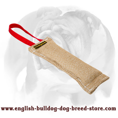 English Bulldog Puppy Joy Jute Bite Tug with Nylon Handle