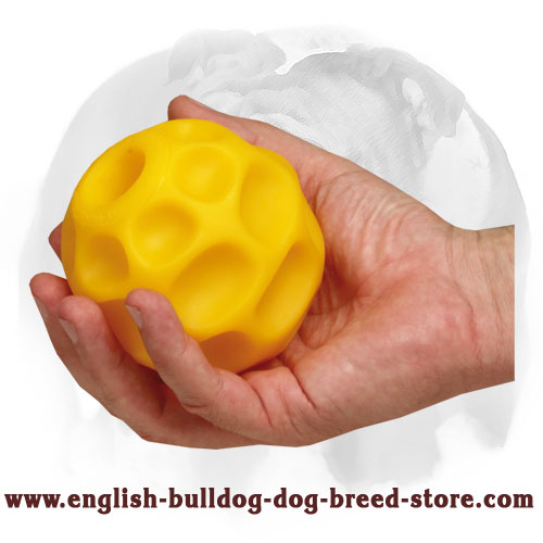 English Bulldog Treat Dispenser Medium Tetraflex Ball