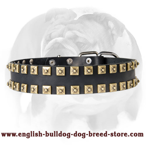 "English Bulldog Leather Vintage Style ""Caterpillar"" Dog Collar"