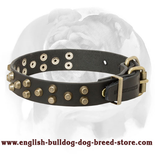 English Bulldog Pure Leather Dog Collar with Buckle